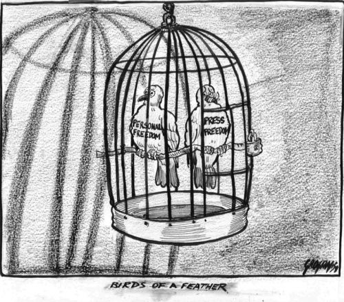 'Apartheid Press Restrictions 2': Africartoons.com