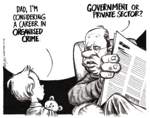 'A Career in Organised Crime': Africartoons.com
