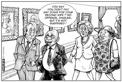'No Lobola for the Lady': Africartoons.com