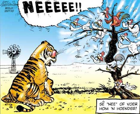 'Tiger amongst the chickens': Africartoons.com