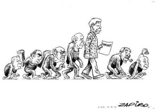 'The Evolution and Devolution of Democracy': Africartoons.com