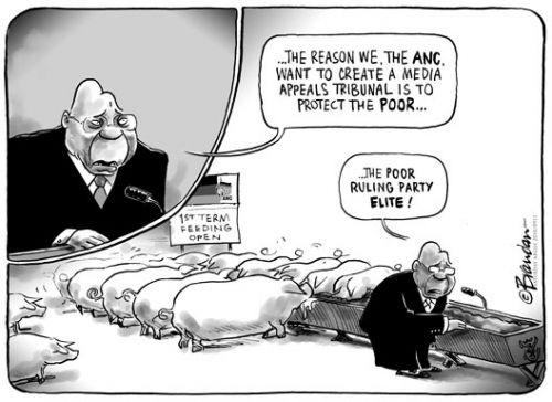'Protecting the poor elite': Africartoons.com