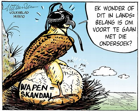 'Protecting Hawks and Crooks': Africartoons.com