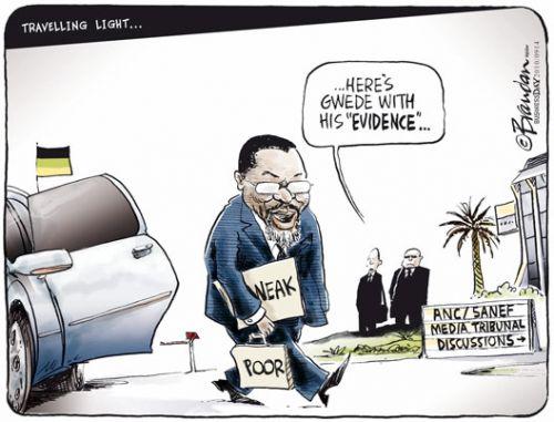 'Gwede's evidence': Africartoons.com