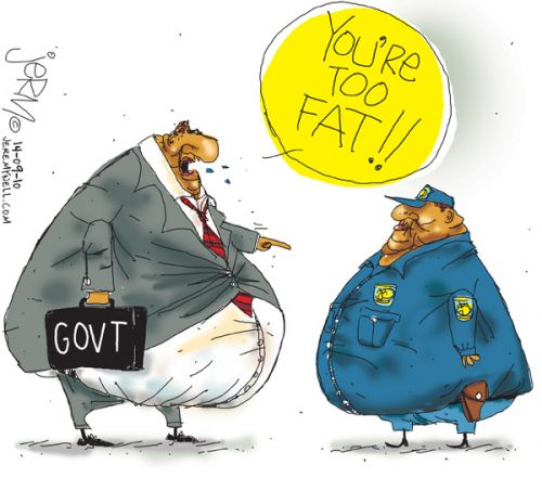 'Big Gov, Fat Cop': Africartoons.com