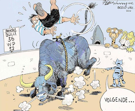 'WP Bulled Over': Africartoons.com