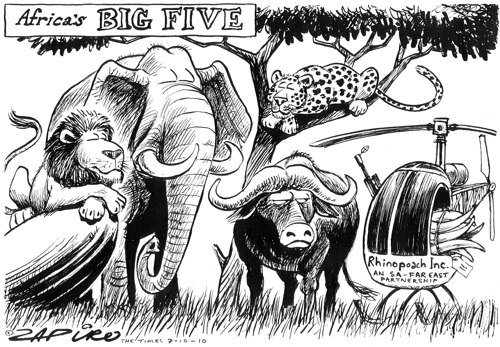 'Africa's Big Five': Africartoons.com