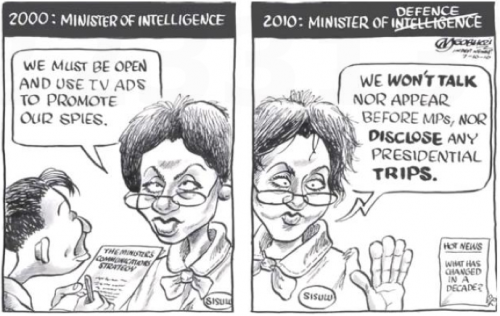 'Defensive Intelligence': Africartoons.com