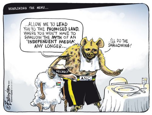 'Pulling the wool over our eyes': Africartoons.com