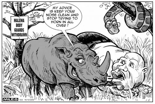 'Malema gets protection advice... from a Rhino': Africartoons.com