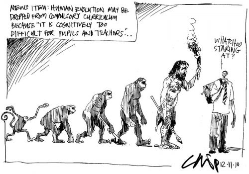 'Counter Evolution': Africartoons.com