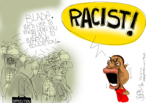 'Blade plays the Race Card': Africartoons.com