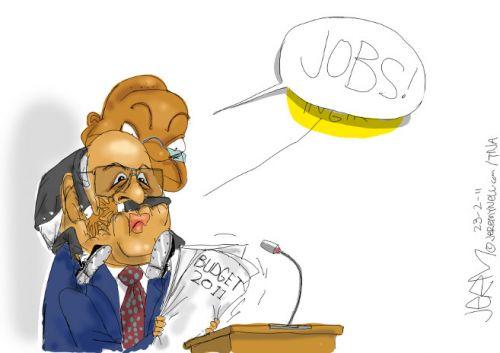 'Budget Priorities 2011': Africartoons.com