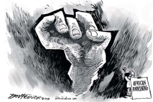 'Africa Awakes': Africartoons.com