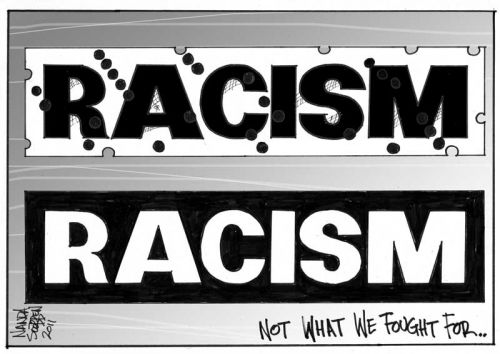 'Racism Comes in All Colours': Africartoons.com