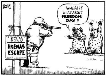 'Hyenas Caught!': Africartoons.com