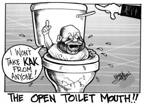 'Flushing Malema': Africartoons.com