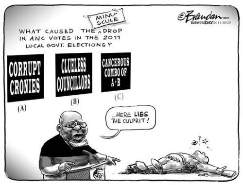 'Blame it On the Media': Africartoons.com