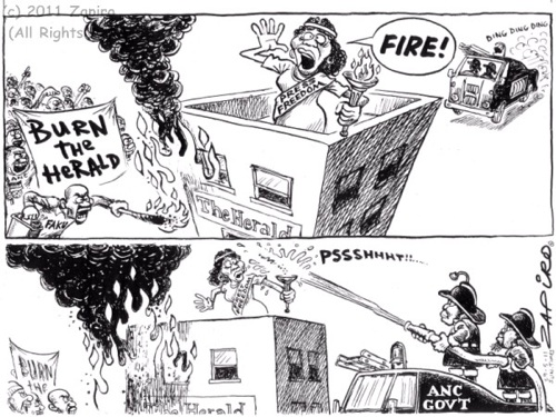 'Flames of Expression': Africartoons.com