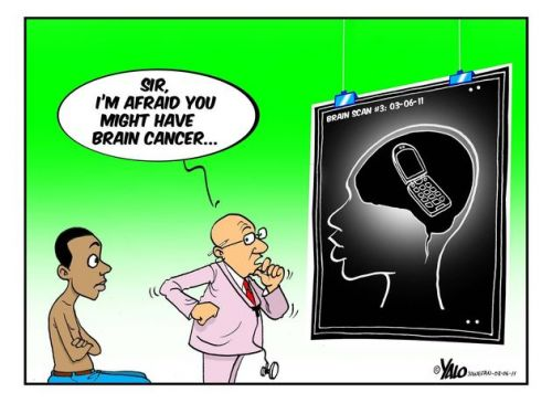 'Warning: Cell Phones Can Fry Your Brain!': Africartoons.com