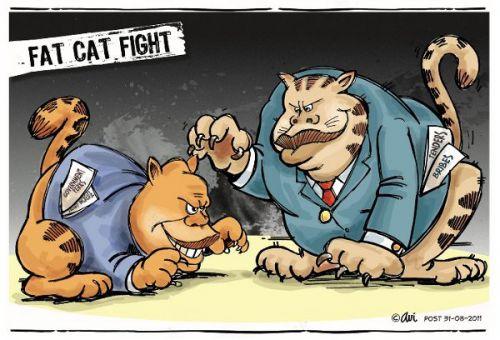 'Fat Cat Fight': Africartoons.com
