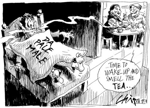 'Revenge of the Tea Lady': Africartoons.com