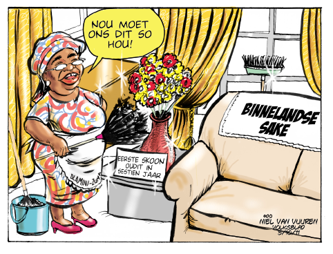 'Dlamini-Zuma Keeps Good House': Africartoons.com