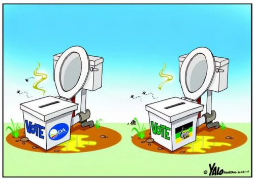 'Nothing Two Loos': Africartoons.com