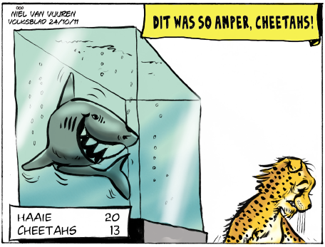 'Sharks take Cheetahs': Africartoons.com