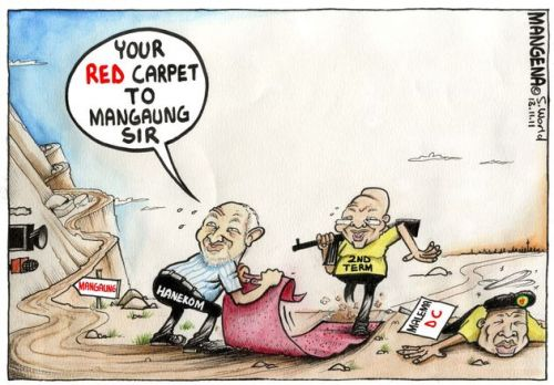 'Roll Out the Red Carpet for Zuma': Africartoons.com