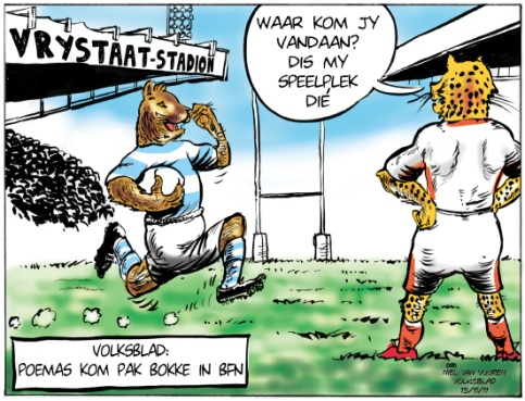 'Argentina to Play Boks in Bloem': Africartoons.com