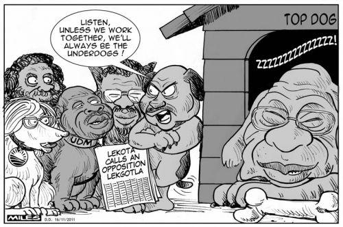 'Underdogs vs The Top Dog': Africartoons.com