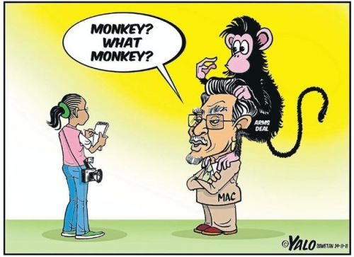 'The Monkey on Mac's Back': Africartoons.com