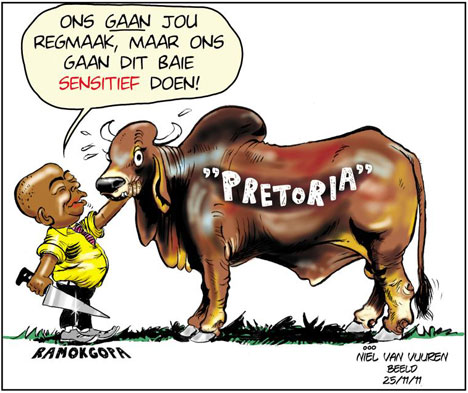 'Bull By Any Other Name': Africartoons.com