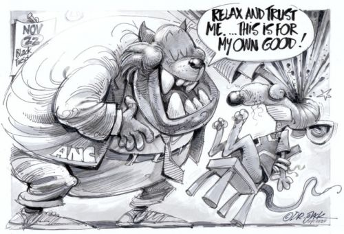 'Fat Cat and Blind Mouse': Africartoons.com