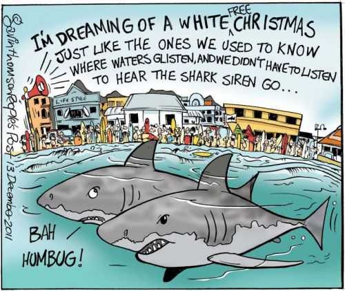 'Christmas in Muizenberg': Africartoons.com