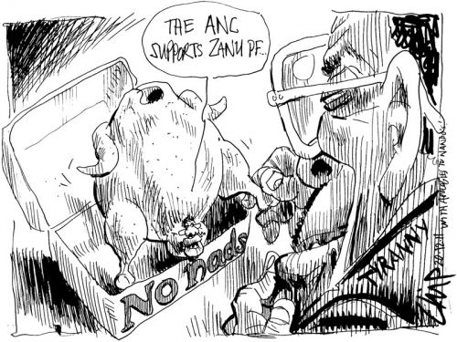 'Chicken to Change': Africartoons.com