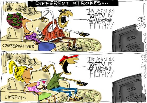 'Porn in the New SA': Africartoons.com