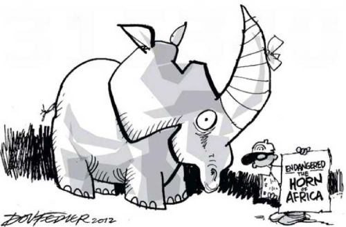 'The Horn of Africa': Africartoons.com