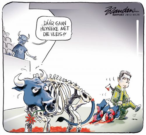 'Heyneke the Matador ': Africartoons.com