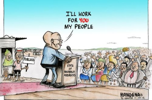 'The State for Nkandla': Africartoons.com