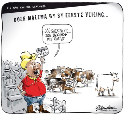'No Sacred Cows for Malema': Africartoons.com