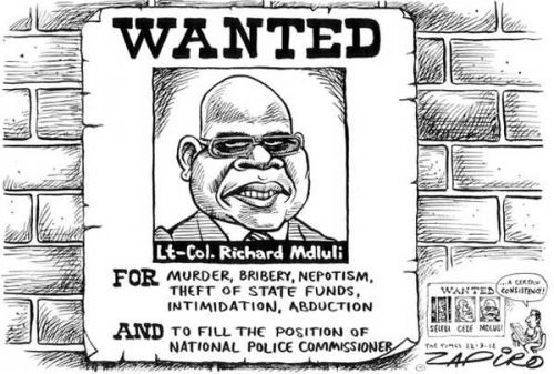 'Wanted by the South African Police': Africartoons.com