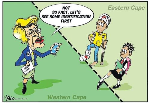 'DO NOT TRESPASS: This is Zille Country': Africartoons.com