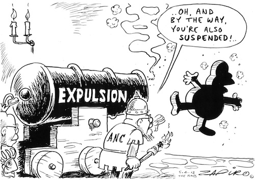 'Multi Disciplinary Efforts of the ANC': Africartoons.com