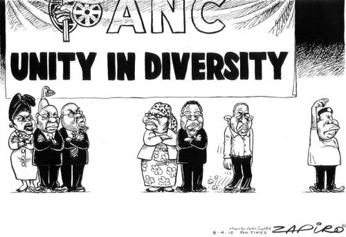 'Unity in Diversity': Africartoons.com