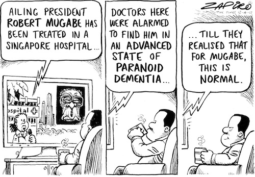 'Mugabe's Illness Diagnosed': Africartoons.com