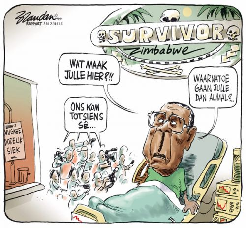 'Mugabe Wants to Know What All The Fuss is About': Africartoons.com