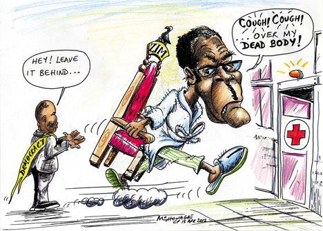 'Mugabe's Taking it With Him': Africartoons.com