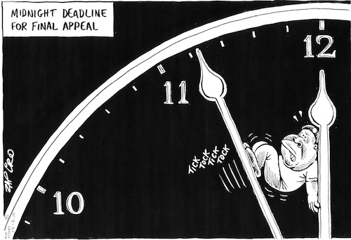 'Time is Running Out for Juju': Africartoons.com